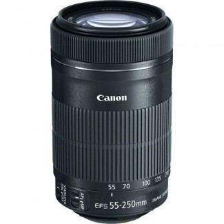 Canon EF-S 55-250mm F/4-5.6 IS STM Lens -2686